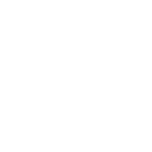NSA-CSP Logo White on Transparency