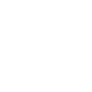 National Speakers Association White on Transparency